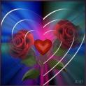 coração sem juizo