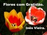 flores com gratidão