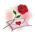 a rosa sozinha