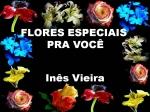 flores especiais pra você