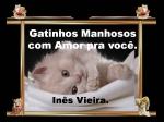 mensagem gatinhos manhosos com amor pra você