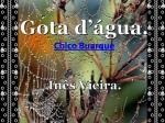 gota dágua