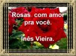 rosas com amor pra você