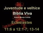biblia viva eclesiastes 11 e 12 juventude e velhice