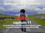 biblia viva evangelho joao cap 11