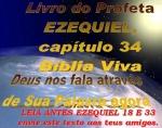 biblia viva ezequiel 34 pastor