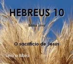 biblia viva hebreus 10