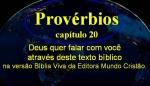 biblia viva proverbios 20