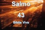 biblia viva salmo 43