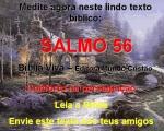 biblia viva salmo 56