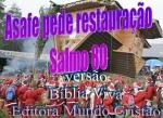 biblia viva salmo 80 socorro