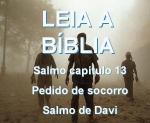 biblia viva salmos 13 socorro