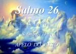 biblia viva salmos 26 apelo do justo
