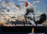 biblia viva salmos 90 fugacidade