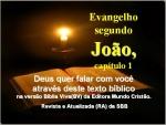 bibliavirara joão 01