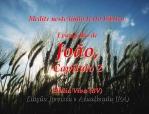 bibliavivara joão 02