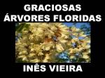 118 graciosas árvores floridas