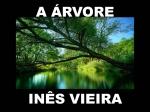 a �rvore