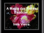 a magia das flores exóticas