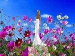 linda primavera