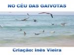 mensagem no céu das gaivotas