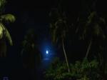 noite jroman