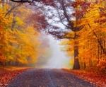 e se a vida fosse uma estrada 2