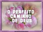 mensagem o perfeito caminho de deus
