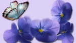 primavera e quando