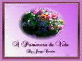 mensagem A primavera da vida