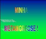 minha metaformose